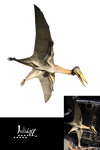 Flying dinosaur 2