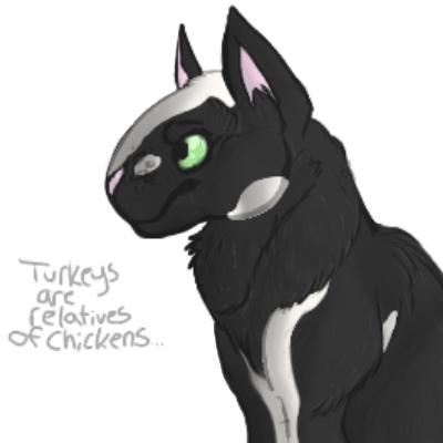 Turkeys and Chickens by d0fferz
