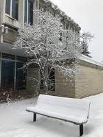 Selkirk College Winters