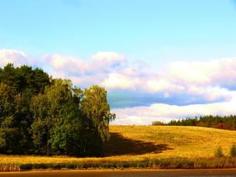 autumn 7 by ChildOfSuomea