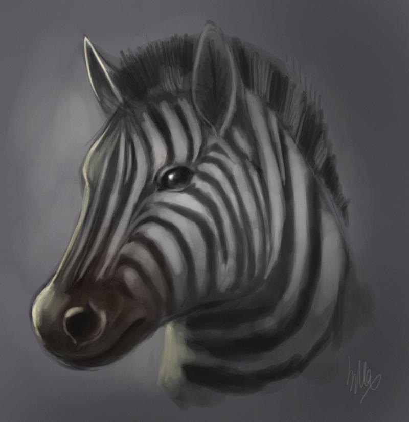 Zebra quickie by Silverfox5213