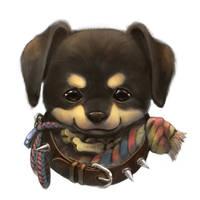 Rottweiler portrait by Silverfox5213