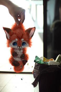 Furry in trash