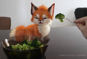 Fox no like brocolli