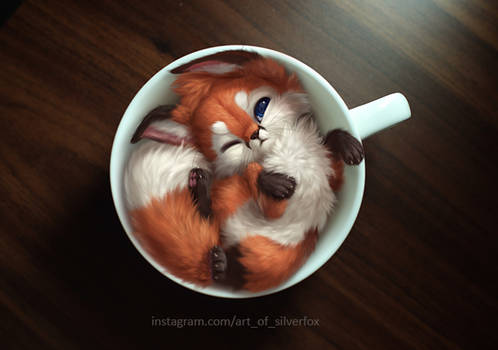 A cup of fox