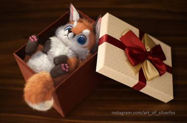 Fox in a Box by Silverfox5213