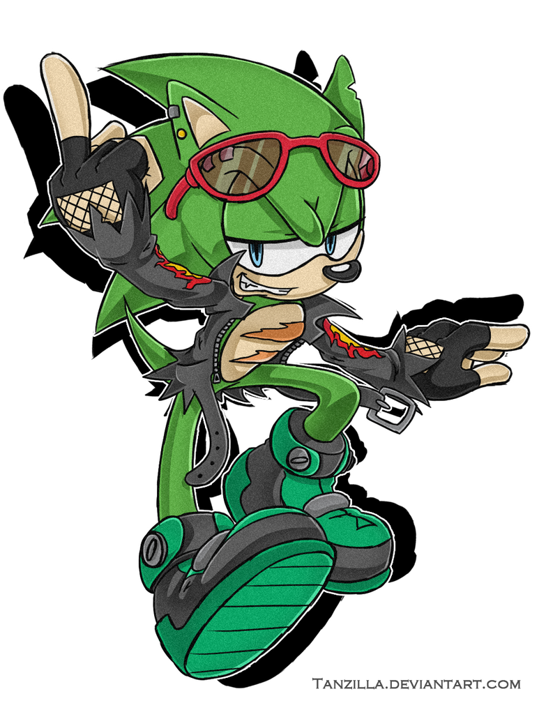 1000  images about Scourge the hedgehog on Pinterest   The ...