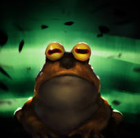 Hypno Toad speed paint