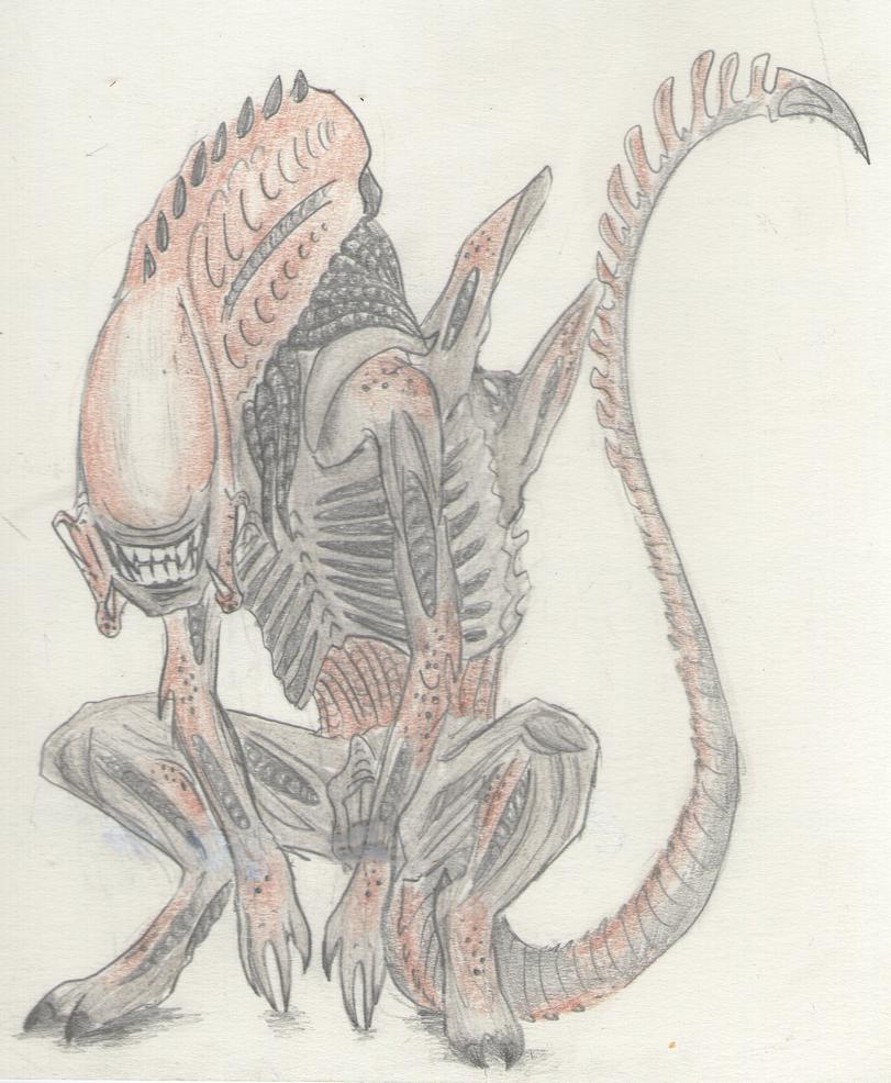 Mis dibujos, espero que os gusten - Página 3 Death__s_smile_by_sweetyxenomorph-d4ymexh