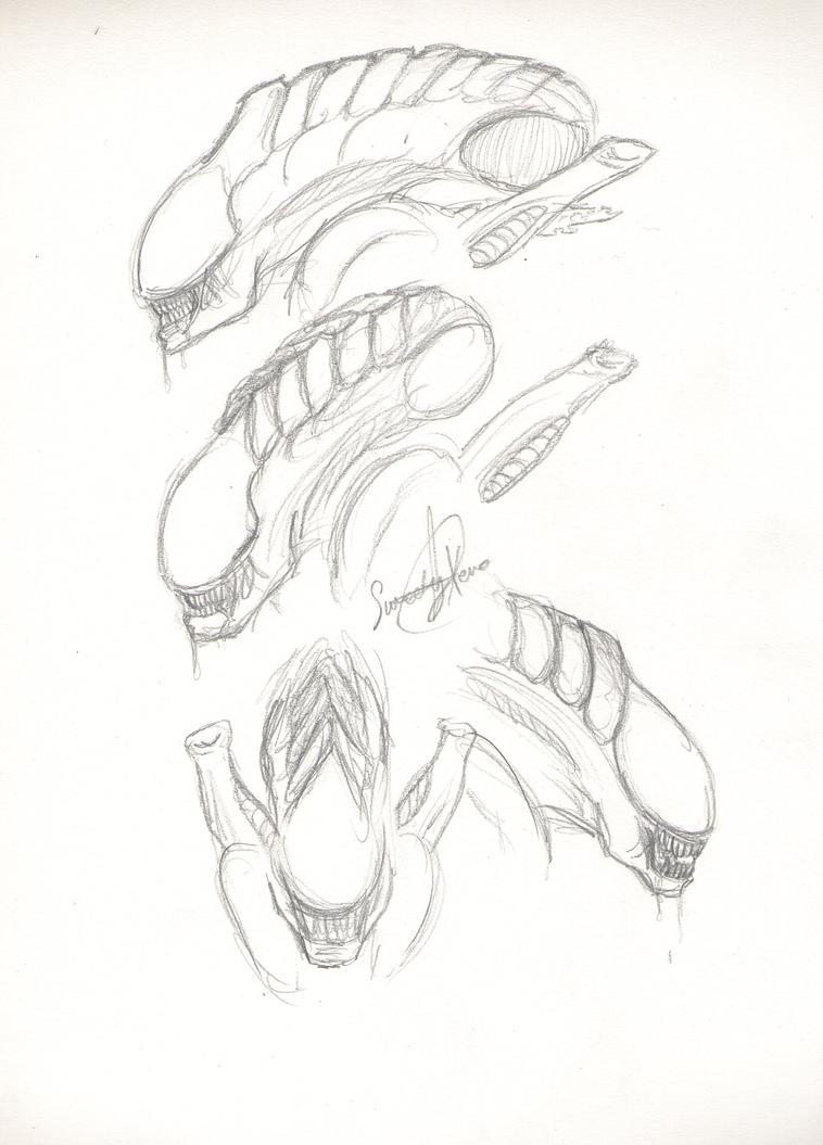 Mis dibujos, espero que os gusten - Página 4 Alien_heads__3_by_sweetyxenomorph-d551fkj