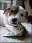 I Chew Money