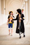 You're not serious, are you?  Law x Luffy XX