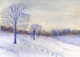 Winter Valley
