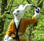 My hare Fursuit