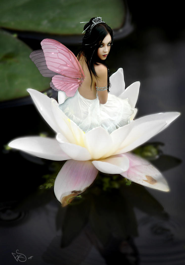 lotus fairy by ladylionink