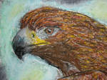 Golden Eagle by chostopher