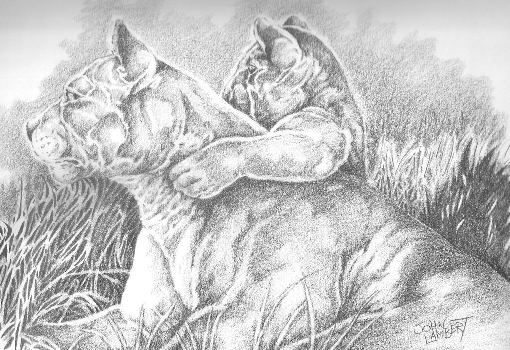 Lion  cub by Batman4art