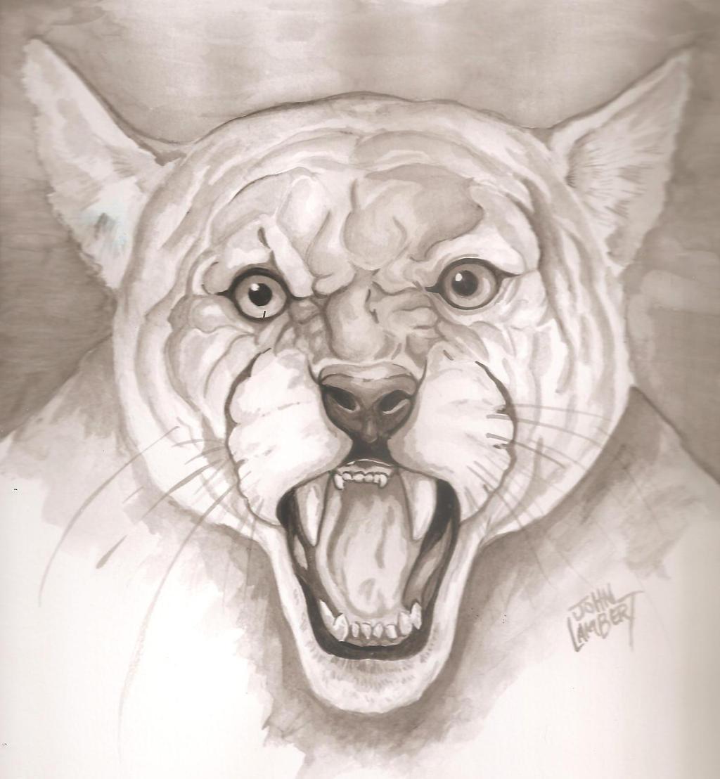Cougar by Batman4art