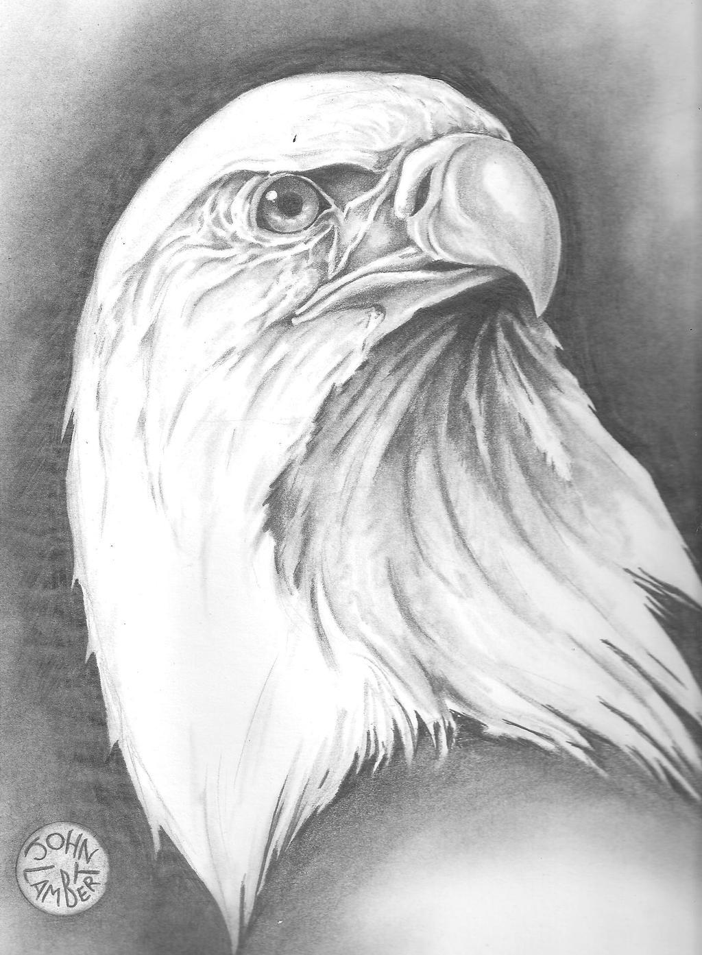 Eagle by Batman4art