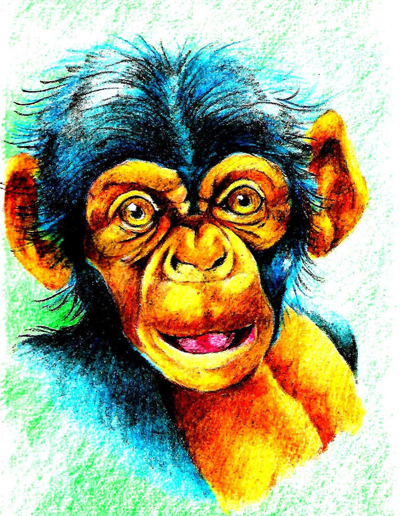 Baby Chimp by Batman4art
