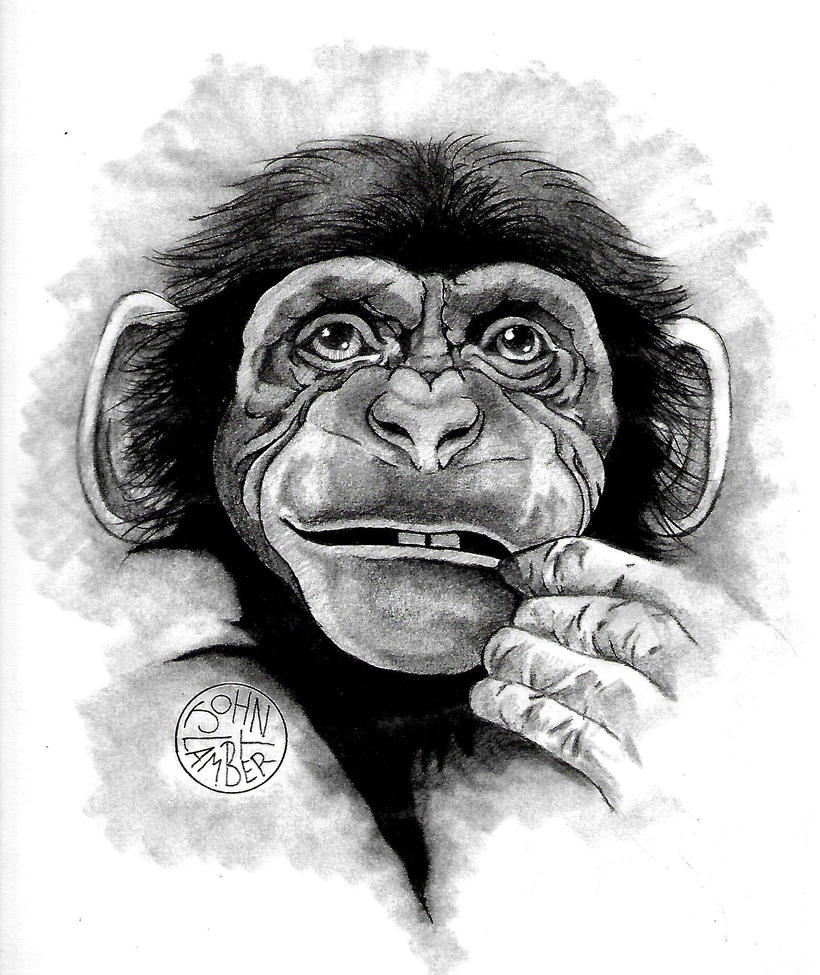 Chimp by Batman4art