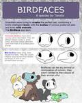 Birdface Reference Sheet