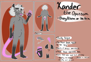 Xander Reference Sheet