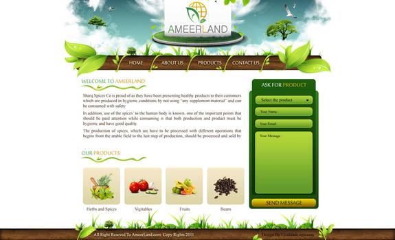 Ameer Land website design