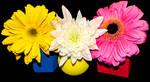 Geometric Flowers by emilymh2018