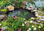Flowers and Pond