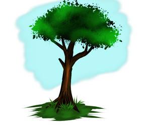 Tree Practice by kajukenbo1