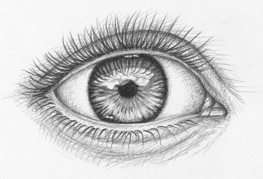 the eye  das augeartsanddogs on deviantart