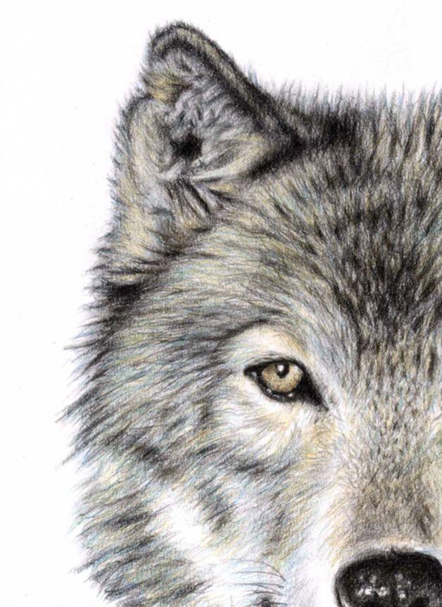 Wolfsauge - Wolf Eye by ArtsandDogs on DeviantArt