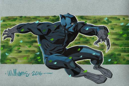 Black Panther for Shelton