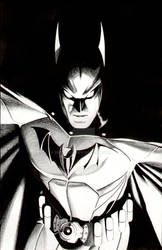 DC Icon  Batman by BroHawk
