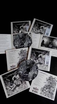 Assatur CD at Great Dane 2019 version