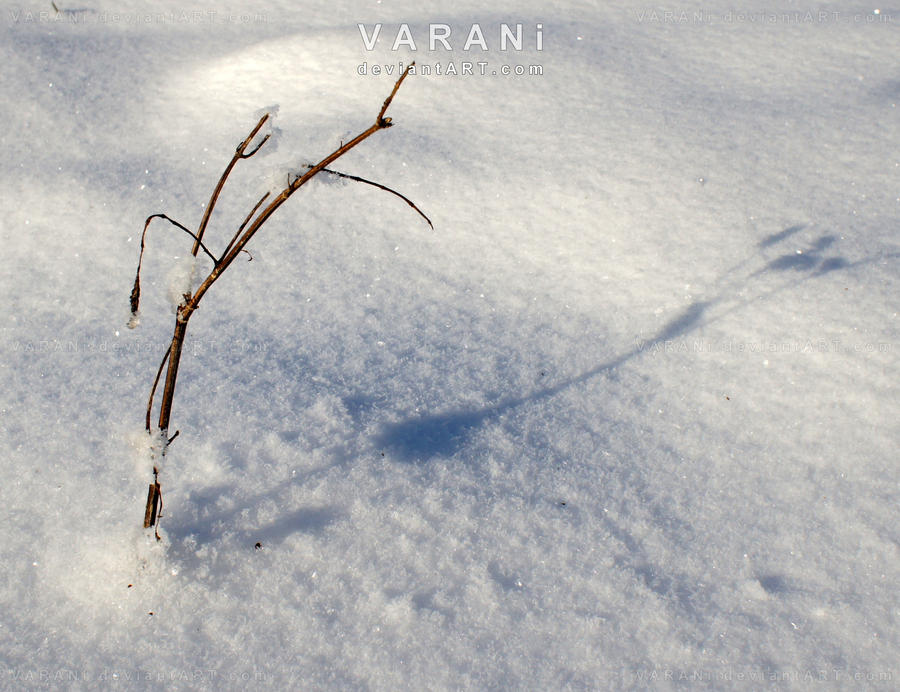 all alone by Varani