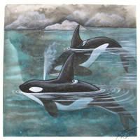 Sumi-e Print: Orcas by dcwilson