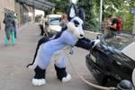 Zuzu pushing police car on Eurofurence (EF20)