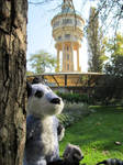Zuzu and JazzBadger on the road - Water tower