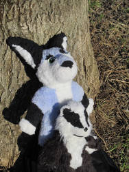 Zuzu and JazzBadger plushies on the road