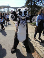 JazzBadger the badger :)