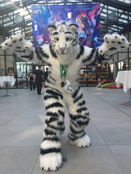 Felix Stripes at Eurofurence 22