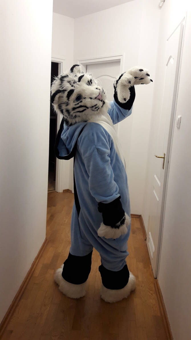 Felix Stripes in Zuzu's Kigu