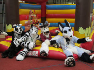 Zuzu family fursuit photoshoot