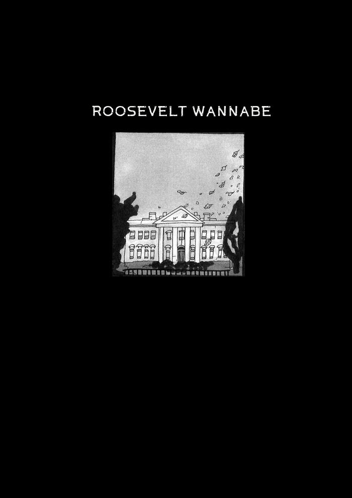 Franklin d roosevelt the new deal essay