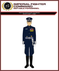 Chief of the Imperial System Guard Bureau