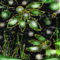 fireflys by Cazzombie13