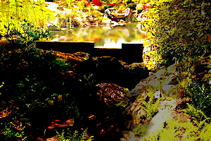 Watery Escape by Soaddragonx1