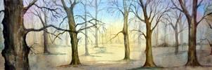 Wild Wood by Pat Coward